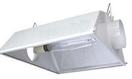 High Intensity Light (HID)